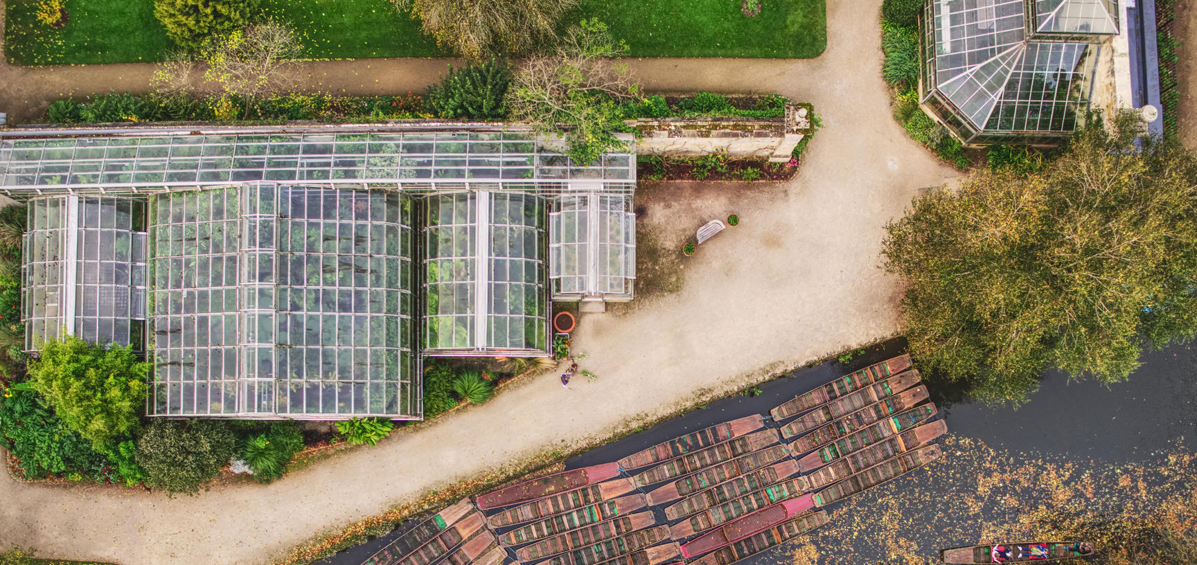 botanic garden  glasshouses  drone  punts  autumn