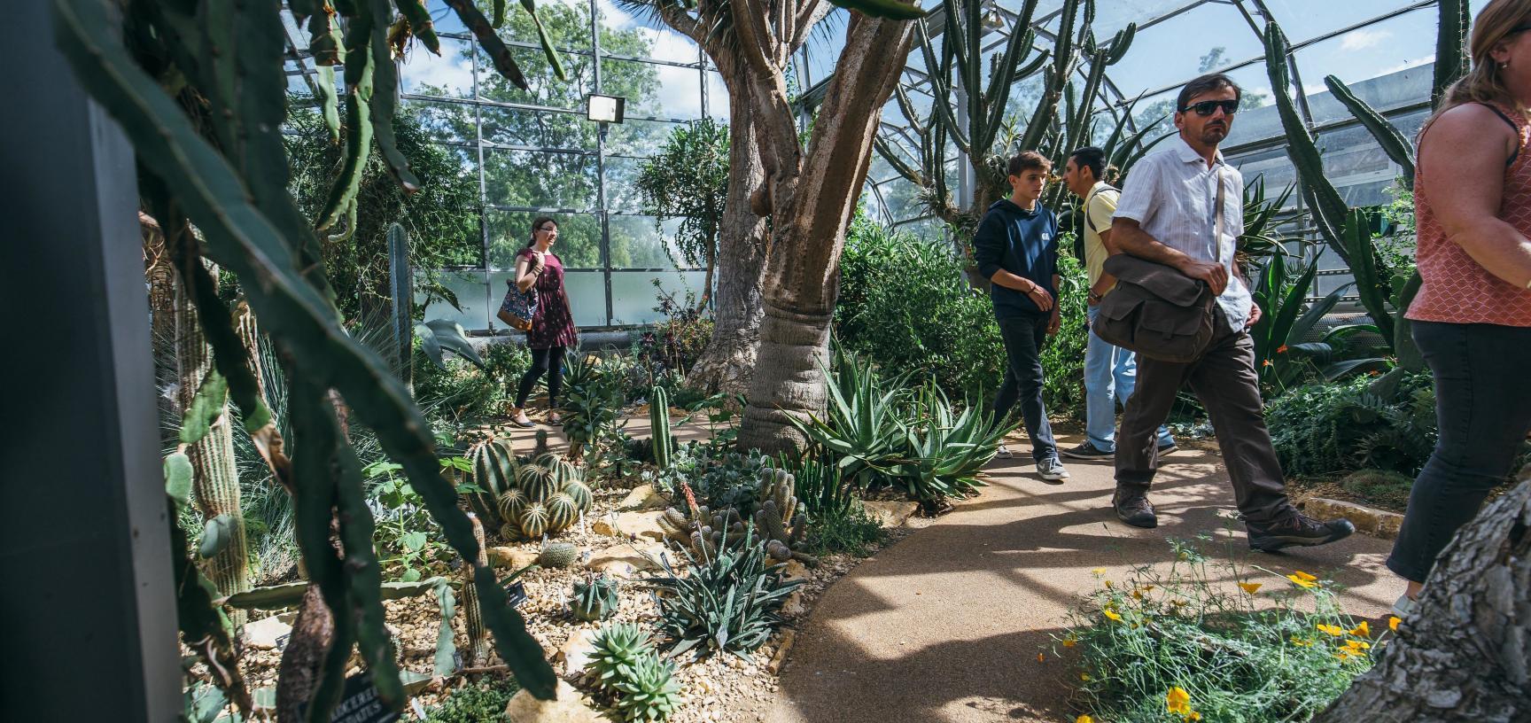 Wallman Arid House Garden HIGH_RES