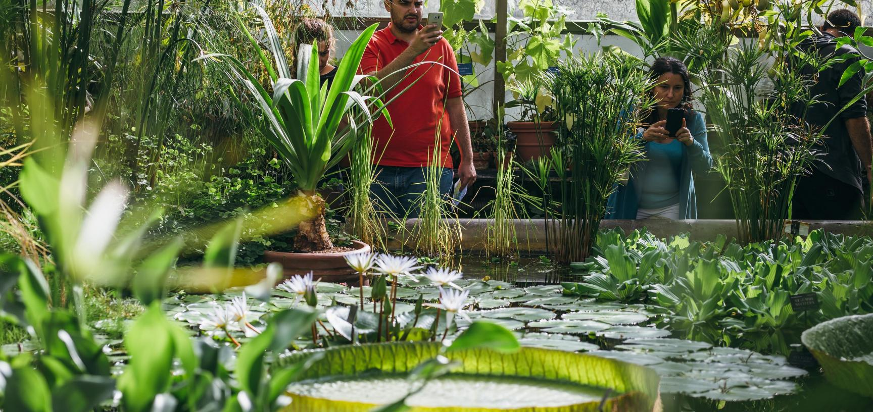 botanicgardensbyianwallman 5640