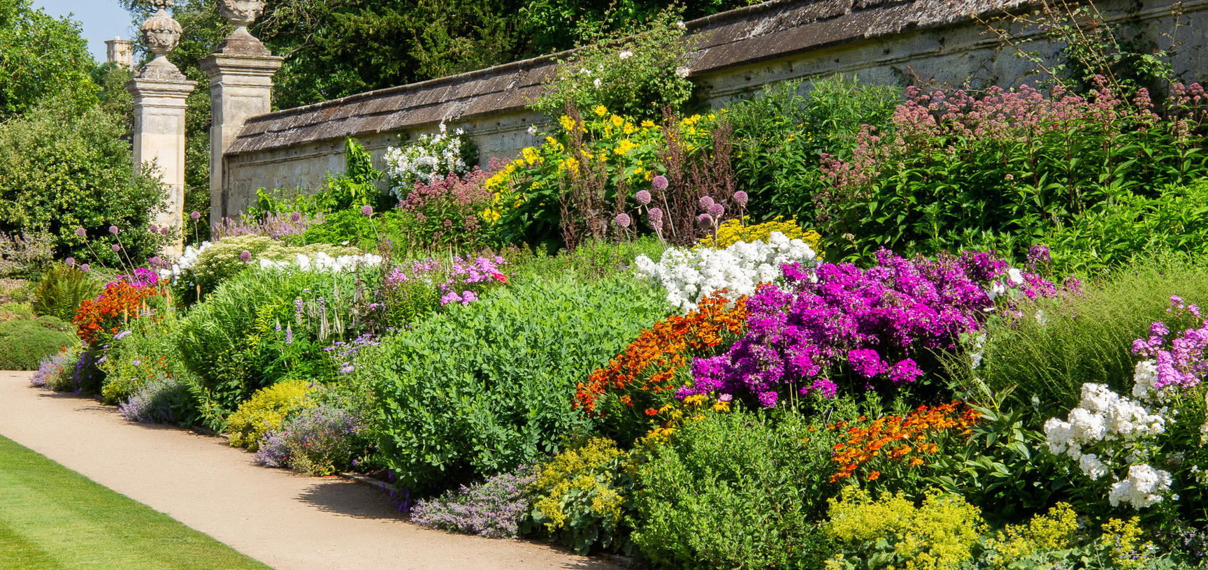 herbaceous border  summer  lower garden  oxford botanic garden