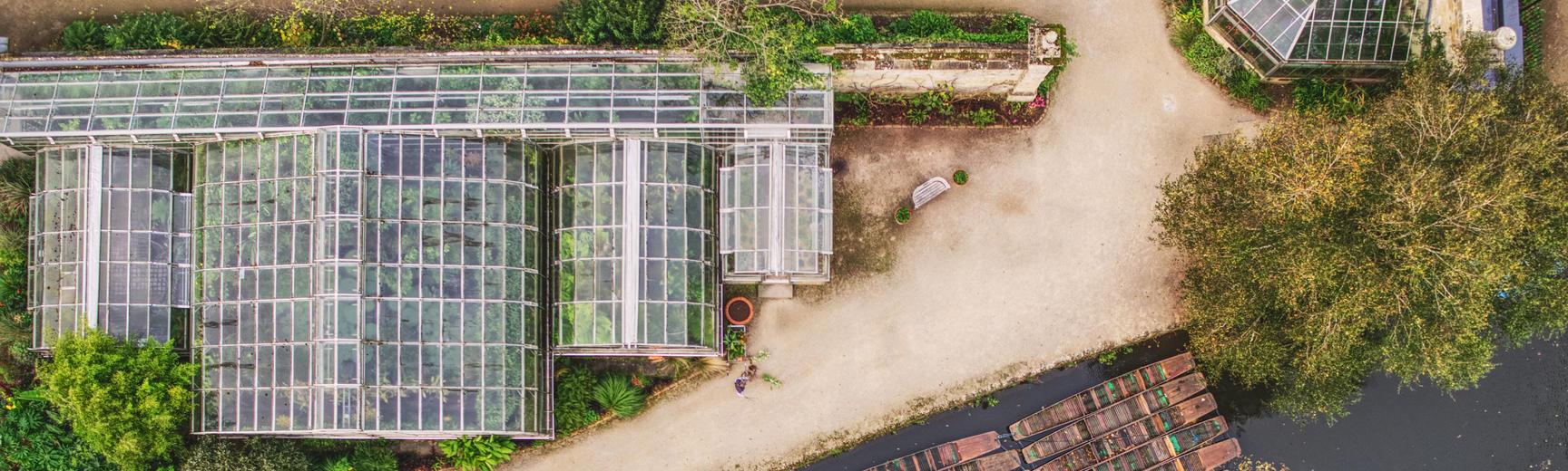 botanic garden  glasshouses  drone  punts  autumn