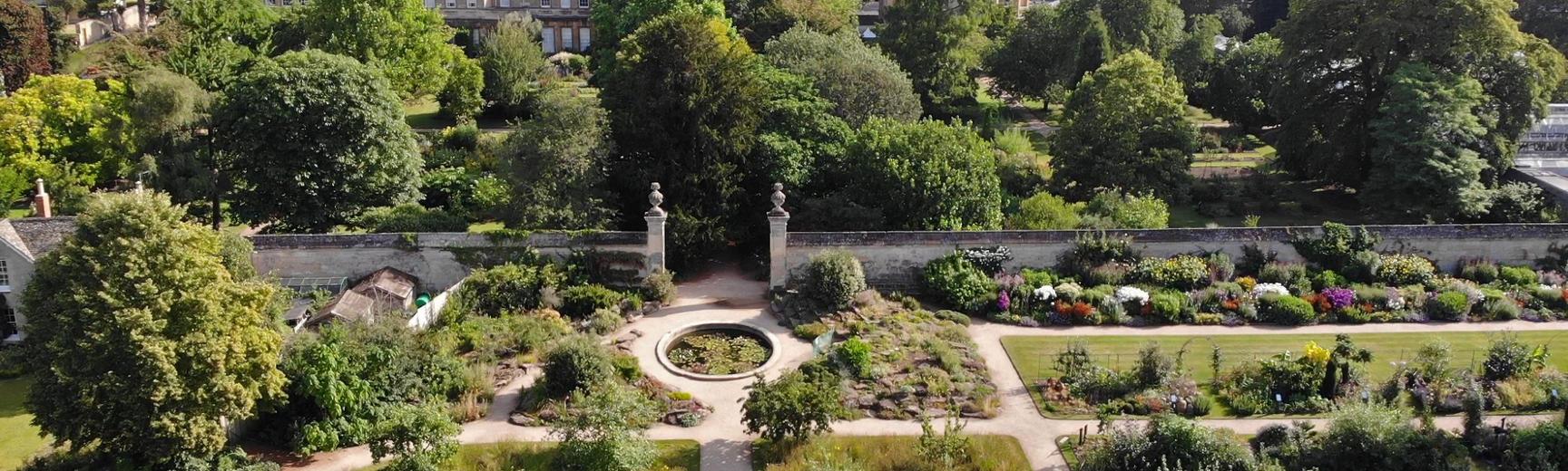 botanic garden drone  summer 2019