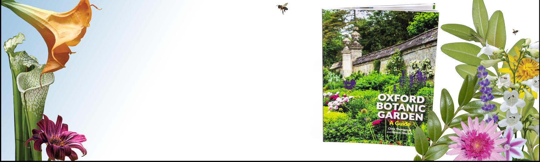 guide book  oxford botanic garden