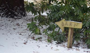 Snowy Barn Sign Arboretum