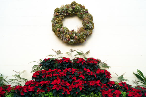 Christmas Fair 2018 Wreath
