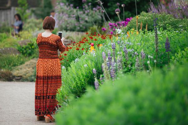 botanicgardensbyianwallman 6759