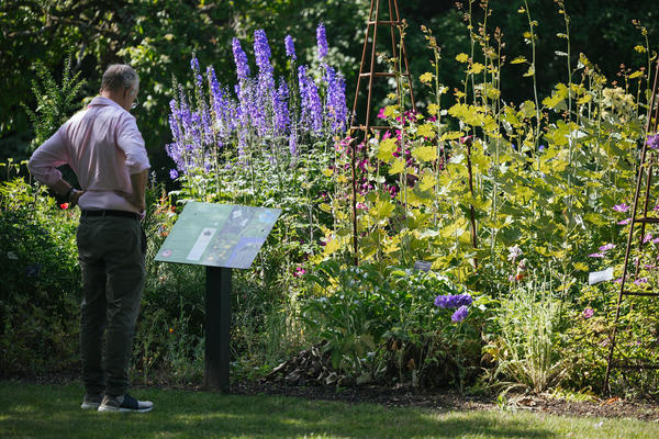 botanicgardensopeningbyianwallman 5564