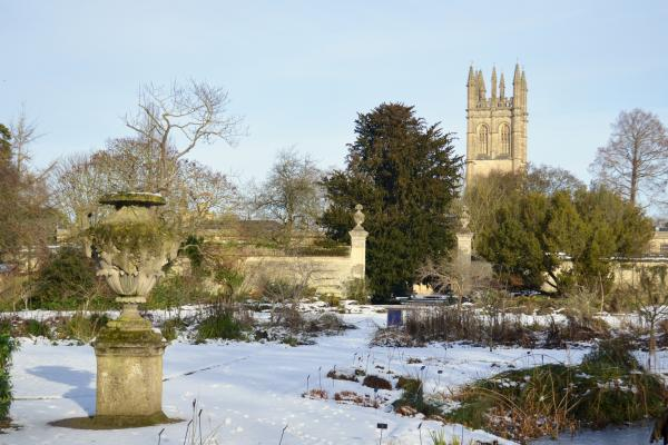 Lower Garden and Magdalen Tower in Snow