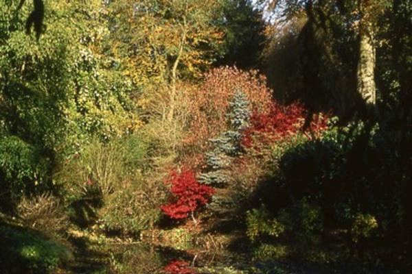 friends visits thenford gardens