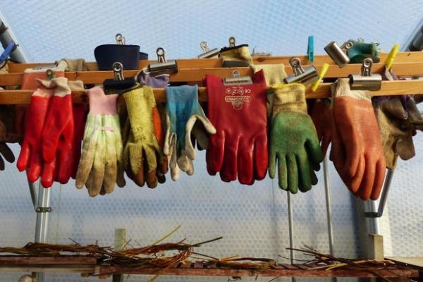 gloves hanging bridewell