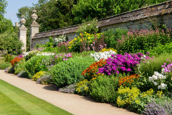 herbaceous border  summer  lower garden  oxford botanic garden