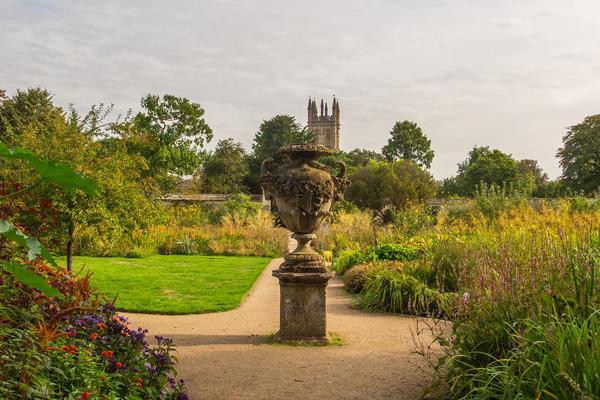 lower garden