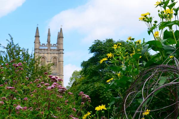 walled garden and magdalen tower