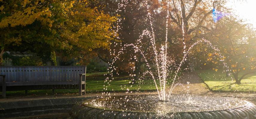 Botanic Garden in Autumn Sun