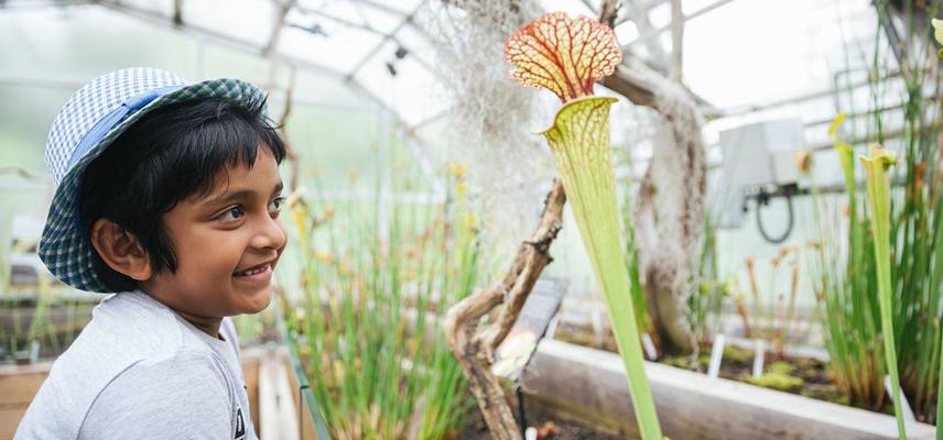 botanicgardensbyianwallman 7086