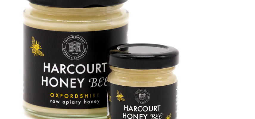 harcourt honey  shop