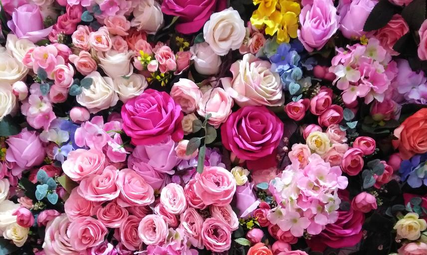 colourful_flowers_celebrate.jpg