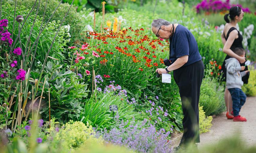 botanicgardensbyianwallman 6713 2