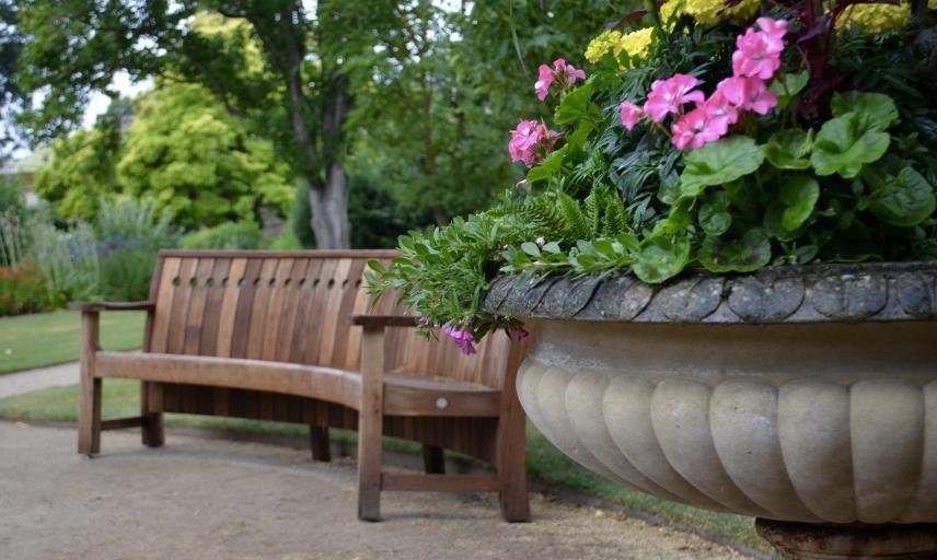 Home Oxford Botanic Garden And Arboretum